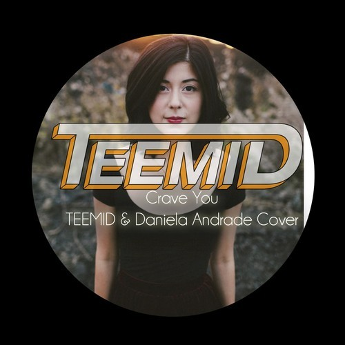 Flight Facilities - Crave You (TEEMID & Daniela Andrade Cover)