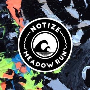 DYLTS - Notize - Meadown Run