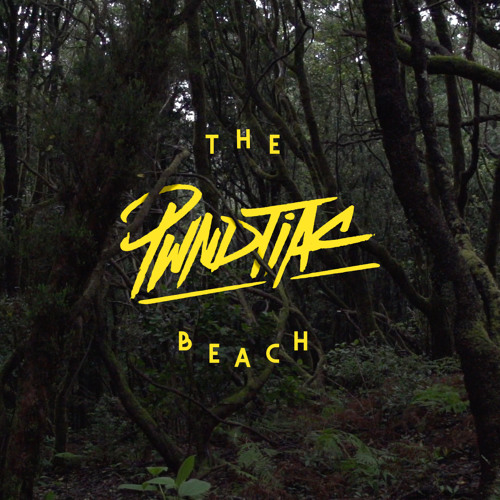 DYLTS - PWNDTIAC - The Beach EP