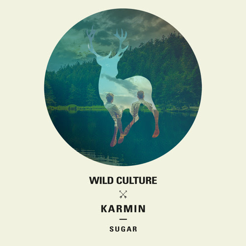 DYLTS - Wild Culture Vs. Karmin - Sugar
