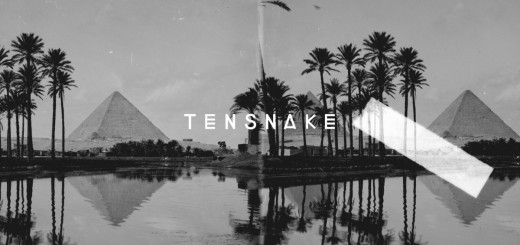 DYLTS - Tensnake - Desire