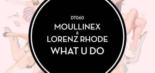 DYLTS - Moullinex & Lorenz Rhode - What U Do