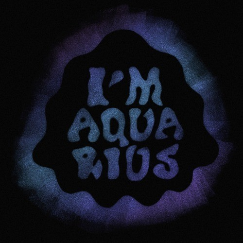 Metronomy - I'm Aquarius (Edwin Van Cleef Remix) DYLTS